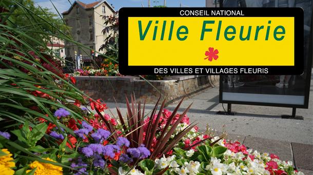Le Plan D Embellissement De La Ville D Angouleme
